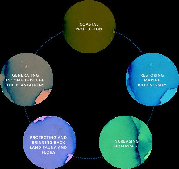 Coastal protection - Restoring marine biodiversity - Increasing biomasses - Protecting and bringing back land fauna and flora - Generating income through the plantations