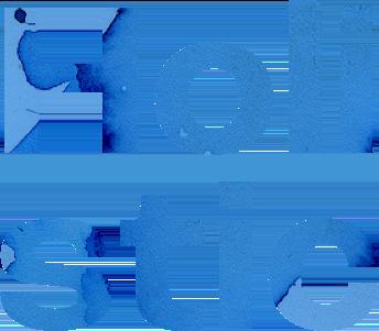 Holistic